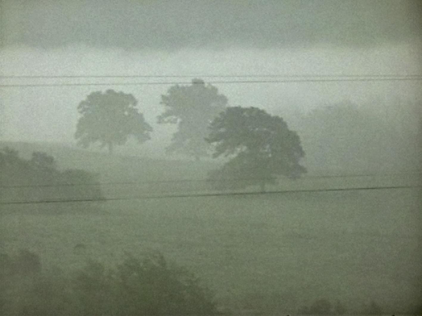 """""""Fog Line"""" von Larry Gottheim"""