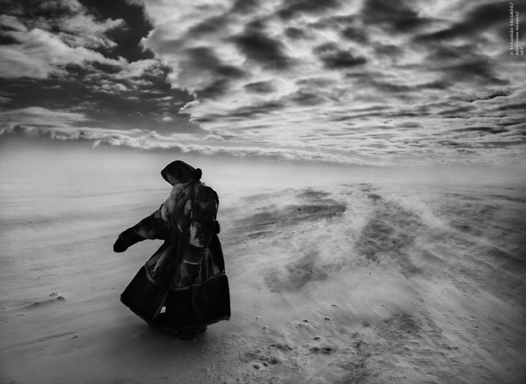 The Salt of the Earth von Wim Wenders und Julian Ribeiro Salgado