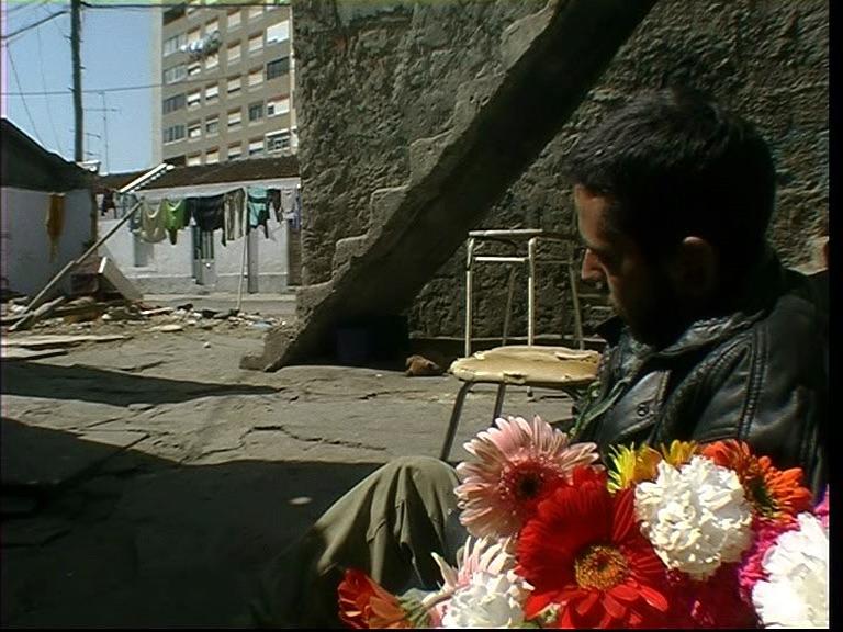 Pedro fiori 3