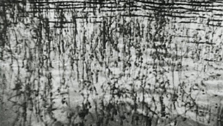 Fischfang in der Rhön (an der Sinn) von Ella Bergmann-Michel